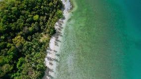 4k trutnia okręgu powietrzna komarnica nad błękitna laguny i raju piaskowata plaża z drzewkami palmowymi kiwa w wiatrze egzotyczn zdjęcie wideo