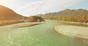 4k UHD鸟瞰图 在新鲜的冷的山河的低飞行在晴朗的夏天早晨 绿色树和太阳光芒 股票视频