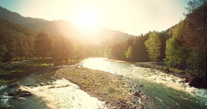 4k UHD aerial view. Low flight over fresh cold mountain river at sunny summer morning. Green trees and sun rays stock video footage