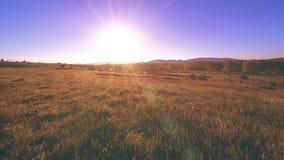 4K UHD-bergweide timelapse bij de zomer Wolken, bomen, groen gras en de beweging van zonstralen stock footage