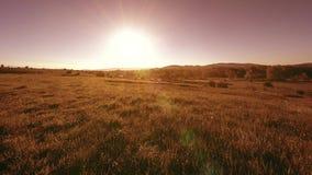 4K UHD-bergweide timelapse bij de zomer Wolken, bomen, groen gras en de beweging van zonstralen stock video