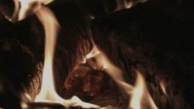 4K UHD graby ogień i Notuje dalej kuchenkę zdjęcie wideo