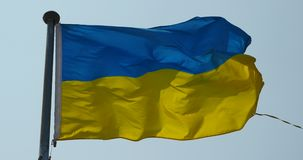 4k Ukraine flag is fluttering in wind. stock video footage
