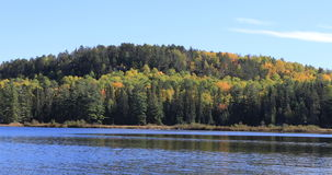 4K UltraHD Algonquin lake and trees in fall stock video footage