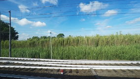4K UltraHd Point of view of sunny countryside from a train. In Italy stock video footage