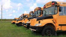 4K UltraHD Timelapse linia parkujący autobusy szkolni zdjęcie wideo