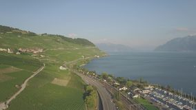 4K ungraded Aerial footage of Vineyard fields in Terrasses de Lavaux near Lausanne in Switzerland - UHD stock footage