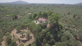 4K ungraded Aerial view of olive tree field in Zakynthos Zante island, in Greece - Log. 4K ungraded Aerial view of olive tree field in Zakynthos Zante island in stock footage