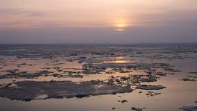 4k upływu zmierzch Lodowy dryf na rzece W wiośnie lodów pławiki zbiory wideo