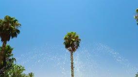 Blue fountain in Majorelle Garden, botanical garden and artist`s landscape garden in Marrakech, Morocco. Crane shot. stock video