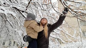 4k video of happy laughing toddler boy with young mother standing under tree covered in snow and shaking its branches. 4k footage of happy laughing toddler boy stock footage