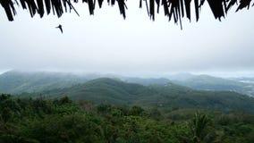 4K vista de montañas verdes con la niebla blanca después de la lluvia la visión desde la cabaña, paja del tejado de la choza es e almacen de video