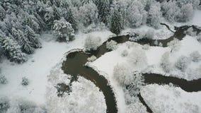 4K Vista panoramica aerea del fiume selvaggio di bobina in foresta congelata inverno al Nord video d archivio