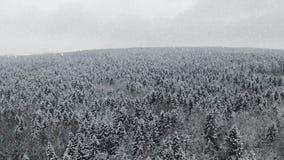 4K Vlucht boven de winterbos bij sneeuwval op het noorden, satellietbeeld stock footage