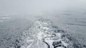 4K Vlucht boven wilde windende rivier in bevroren bos bij mistig weer De Snowlywinter op het noorden Lucht panorama stock video