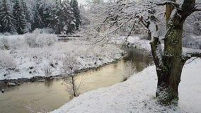 4K Vlucht en start boven boom en wilde windende rivier in bevroren bos bij zonsondergang De Snowlywinter op het noorden Lucht Men stock videobeelden