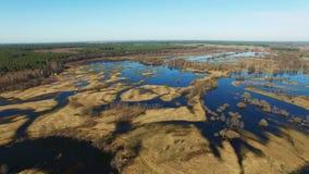 4K Vol au-dessus de rivière bleue en crue en premier ressort, vue panoramique aérienne banque de vidéos