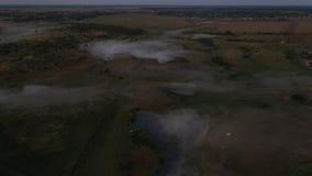 4K vol au-dessus du pré d'été de matin dans le brouillard, beau paysage d'été, de haute qualité clips vidéos