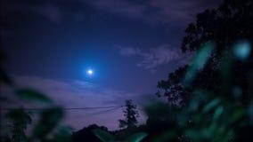 4K volledige glanzende maan bij nacht die tussen bomen met wolken toenemen die door in Portugal overgaan stock video