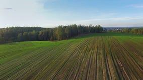4K Volo e decollo sopra le colline verdi ed i campi al tramonto, vista aerea stock footage