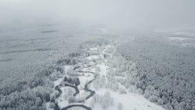 4K Volo sopra il fiume selvaggio di bobina in foresta congelata a tempo nebbioso Inverno di Snowly sul Nord Vista panoramica aere stock footage