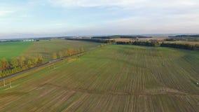 4K Volo sopra le colline verdi ed i campi al tramonto, vista aerea archivi video