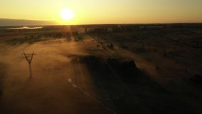4K voo sobre o prado do verão da manhã na névoa, paisagem bonita do verão, de alta qualidade filme