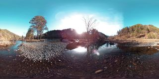 360 VR virtual reality of a wild mountains, pine forest and river flows. National park, meadow and sun rays. stock footage