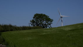 4K wind turbine on hill with tree UK. 4K wind turbine with field and tree stock video