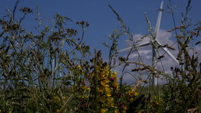 4K wind turbine looking through grasses and flowers UK stock footage