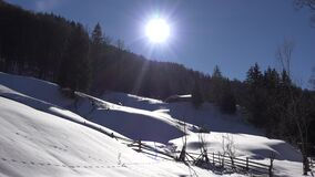 4K Winter landscape in mountain, conifer forest in snow, woods view by day