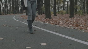 4k - Young woman walking on the alley in the park. 4k Young woman walking on the alley in the park stock video footage
