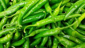 4K zamykają w górę widoku świeży ukradziony zielony chili lub pieprz zdjęcie wideo