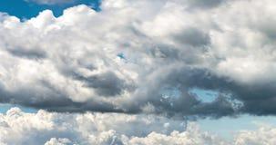 4k Zeitspanneclip einiger flaumiger gelockter rollender Wolkenschichten des Kumulus im windigen Wetter vor Regen stock video footage