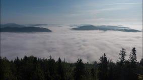 4K Zeitspannewolken, die über Baumhochlandwaldnebelige Morgenlandschaft Carpatian Ukraine sich bewegen stock footage