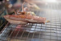 Kałamarnica piec na grillu owoce morza na kuchence miękka część i wybrana ostrość z ciepłym brzmienie kolorem - Obrazy Stock