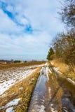 Kałuża na wsi drodze blisko gospodarstwa rolnego i pola, zdjęcie royalty free