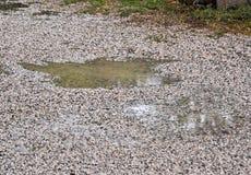 Kałuża woda i raindrops obraz stock