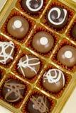 σοκολάτες γαστρονομι&ka Στοκ εικόνες με δικαίωμα ελεύθερης χρήσης