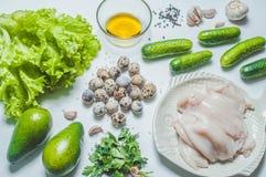Kałamarnica i warzywa na bielu Obrazy Stock