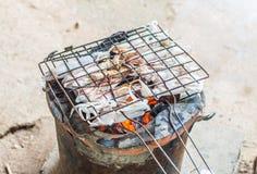 Kałamarnica piec na grillu Zdjęcia Royalty Free