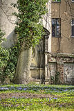 Łąka, drzewo i ruiny, Obraz Royalty Free