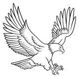 Kaal Eagle 009 stock illustratie