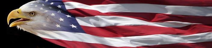 Kaal Eagle en Amerikaanse vlagbanner Stock Foto's