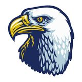Kaal Eagle Head vector illustratie