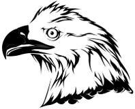 Kaal Eagle Head royalty-vrije illustratie