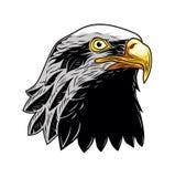 Kaal Eagle, Hoofd van Eagle Vector Illustration, Geïsoleerde Vector stock illustratie