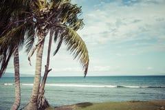 Kaanapali海滩,毛伊夏威夷游人目的地 库存照片