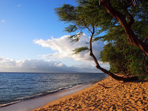 Kaanapali Beach at Dusk with trees and Lanai in the distance Stock Image