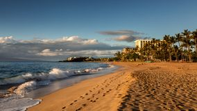 Kaanapali beach in the evening light. Maui, Hawaii royalty free stock image